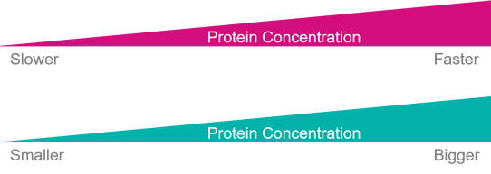 Protein Concentration - blog 4