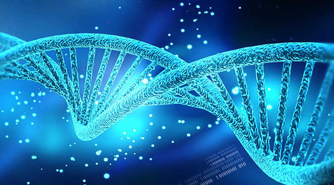 Image-of-DNA-strand